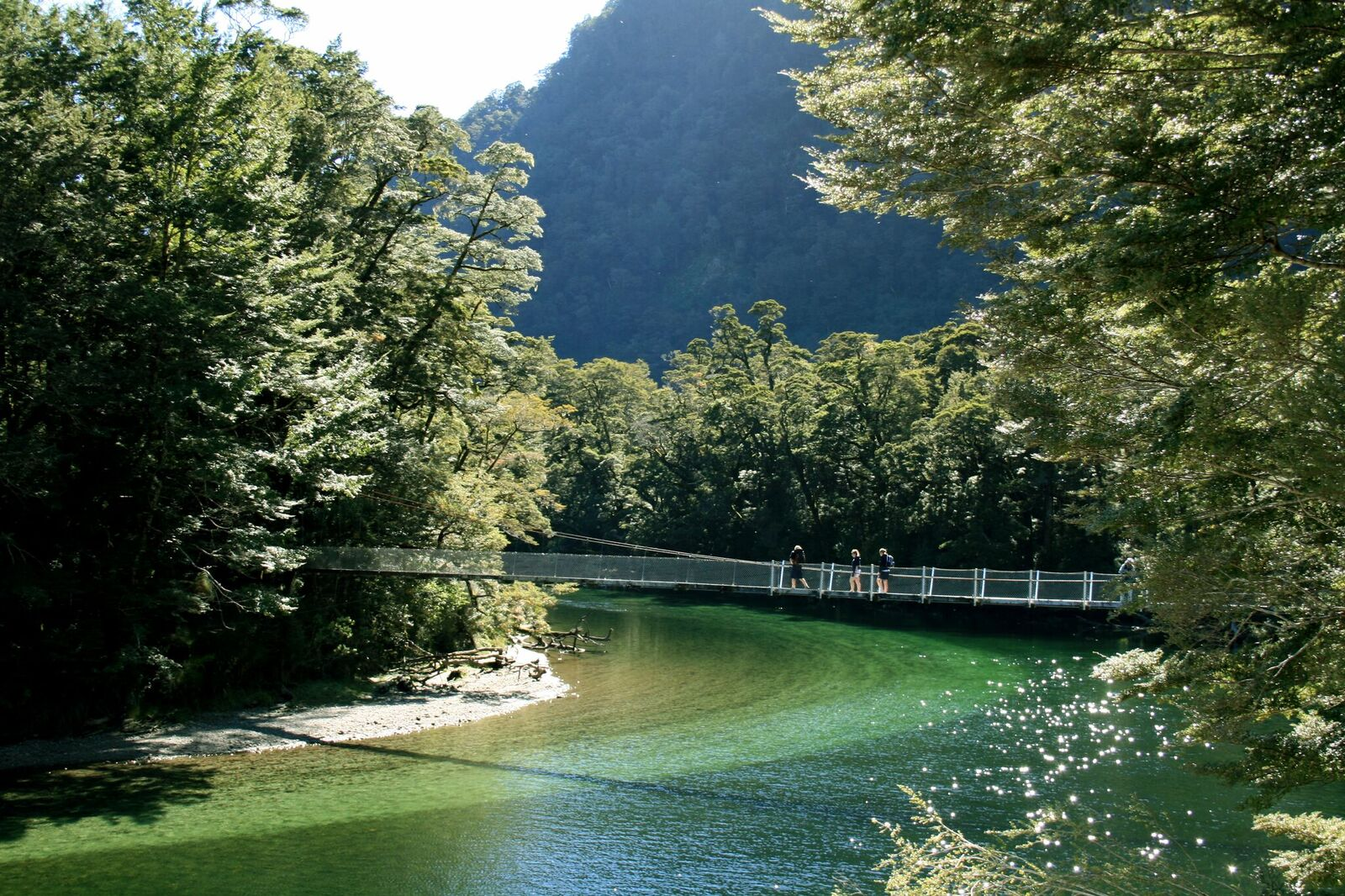 Fiordland National Park, New Zealand attractions, New Zealand activities