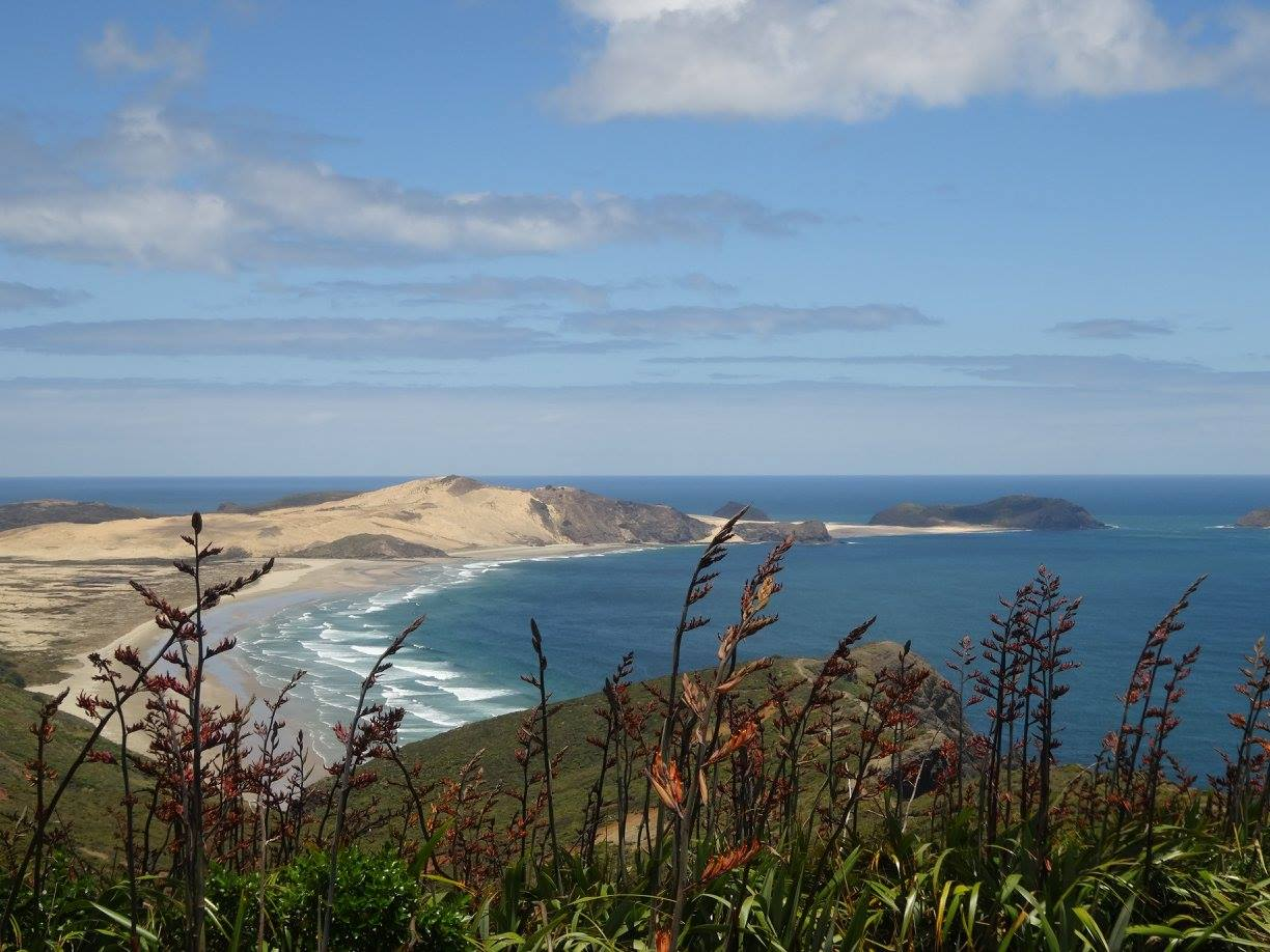 Cape Reinga New Zealand, New Zealand attractions, New Zealand activities