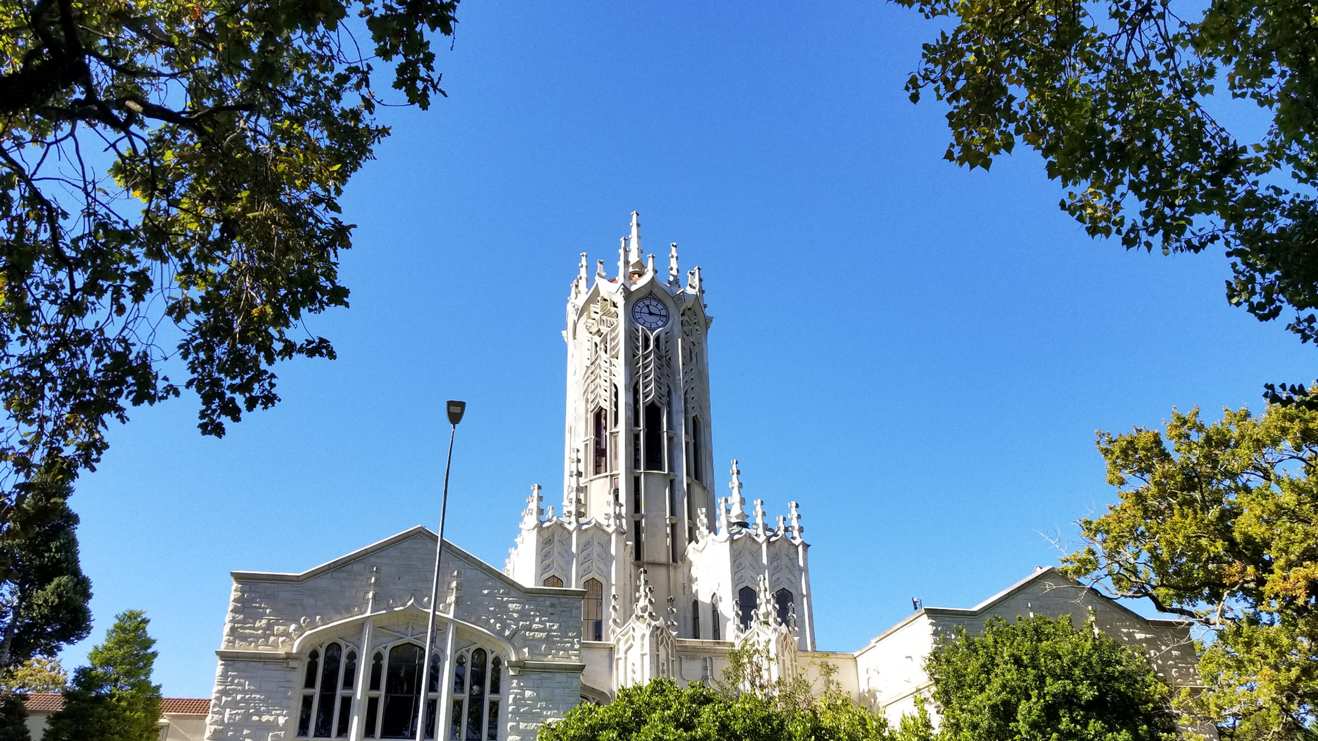 Auckland university, New Zealand attractions, New Zealand activities