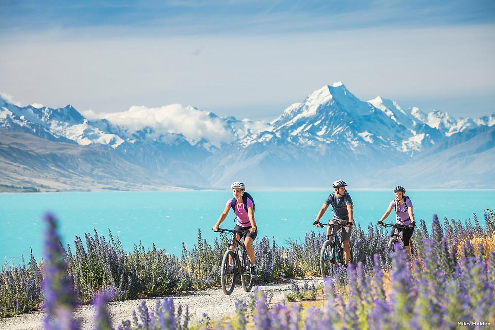Велосипедный тур, Новая Зеландия