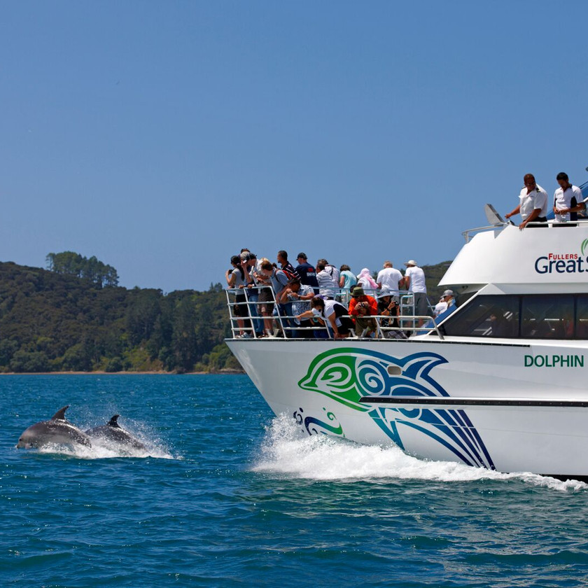 Hole in the Rock Cruise inc Island Stop/Dolphin Viewing (return ex Paihia). New Zealand activities.