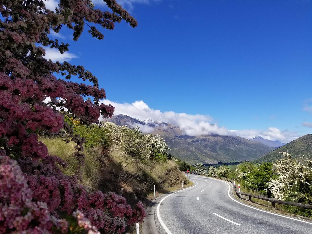 Квинстаун, Новая Зеландия, туры в Новую Зеландию