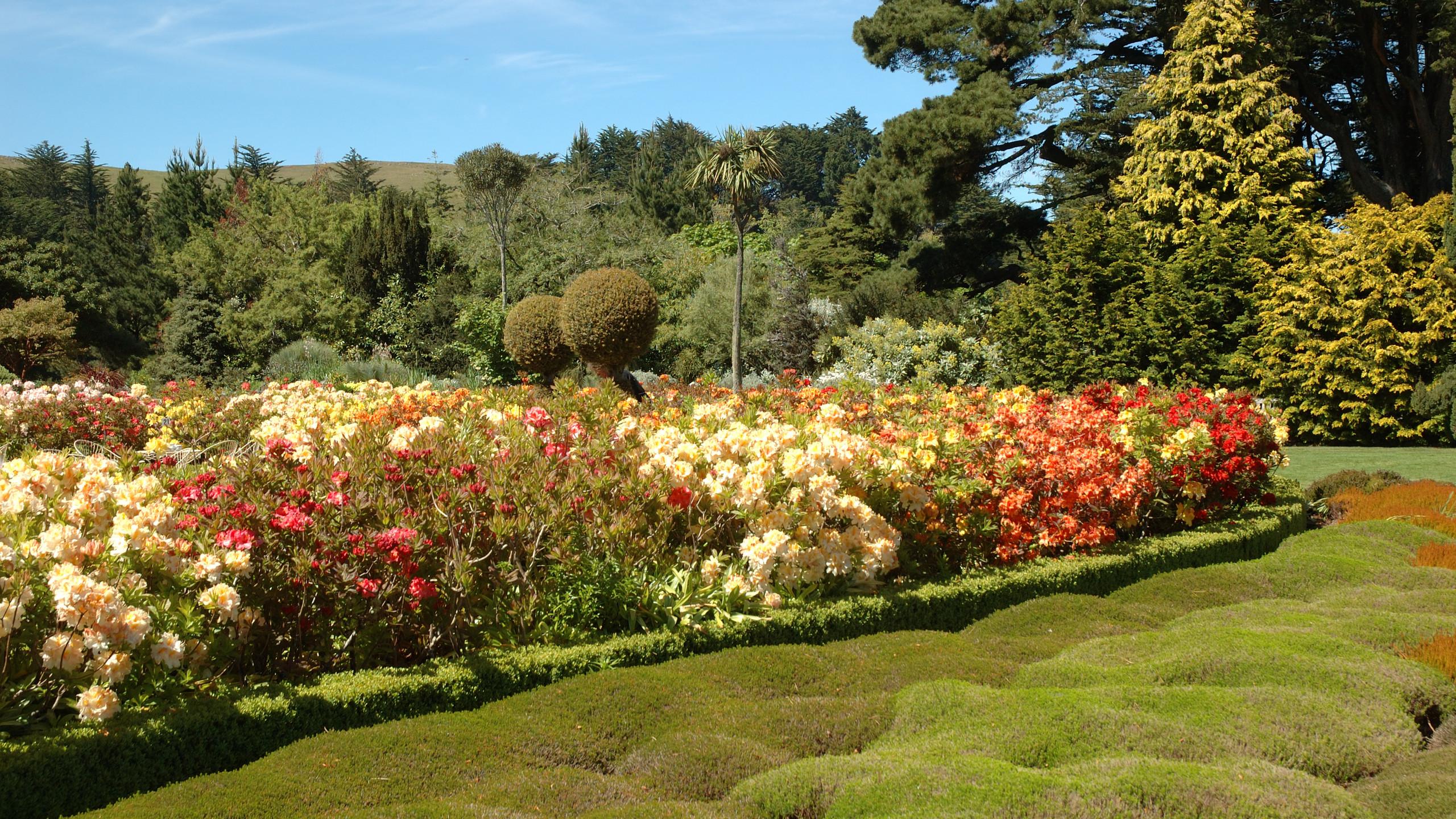 Сады замка Ларнак, Данидин, туры в Новую Зеландию