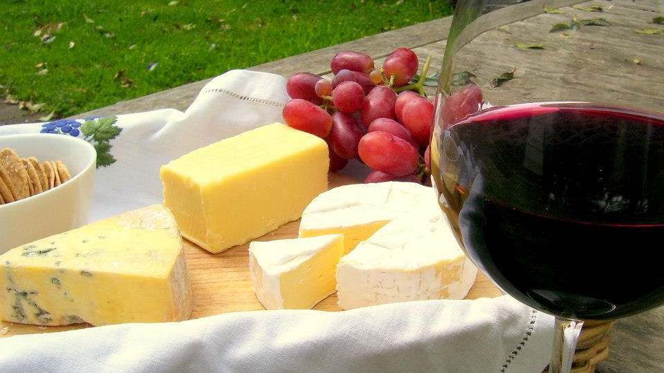 Wine Tour Queenstown New Zealand
