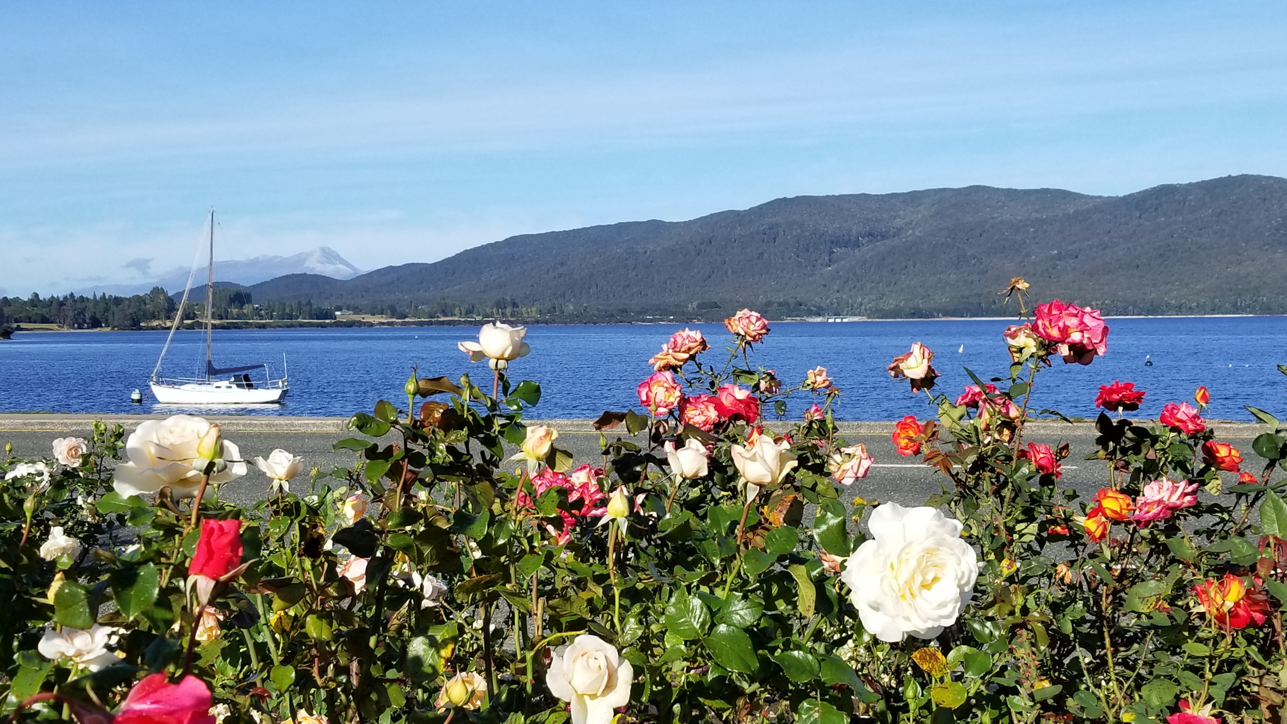 Te Anau lake, New Zealand attractions, New Zealand activities