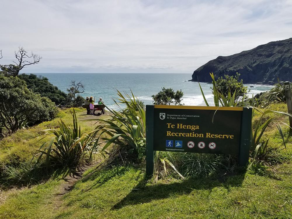 трекинг в Новой Зеландии, походы