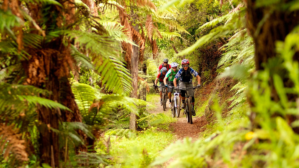 Mountain Bike and Kayak: Maori Rock Carvings Package, Taupo