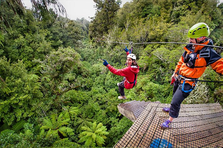 зиплайн под кронами деревьев, Роторуа, туры в Новую Зеландию