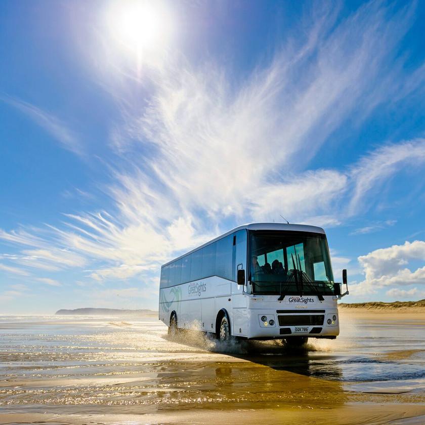 Coach Tour Cape Reinga and Ninety Mile Beach (return ex Paihia). New Zealand activities.