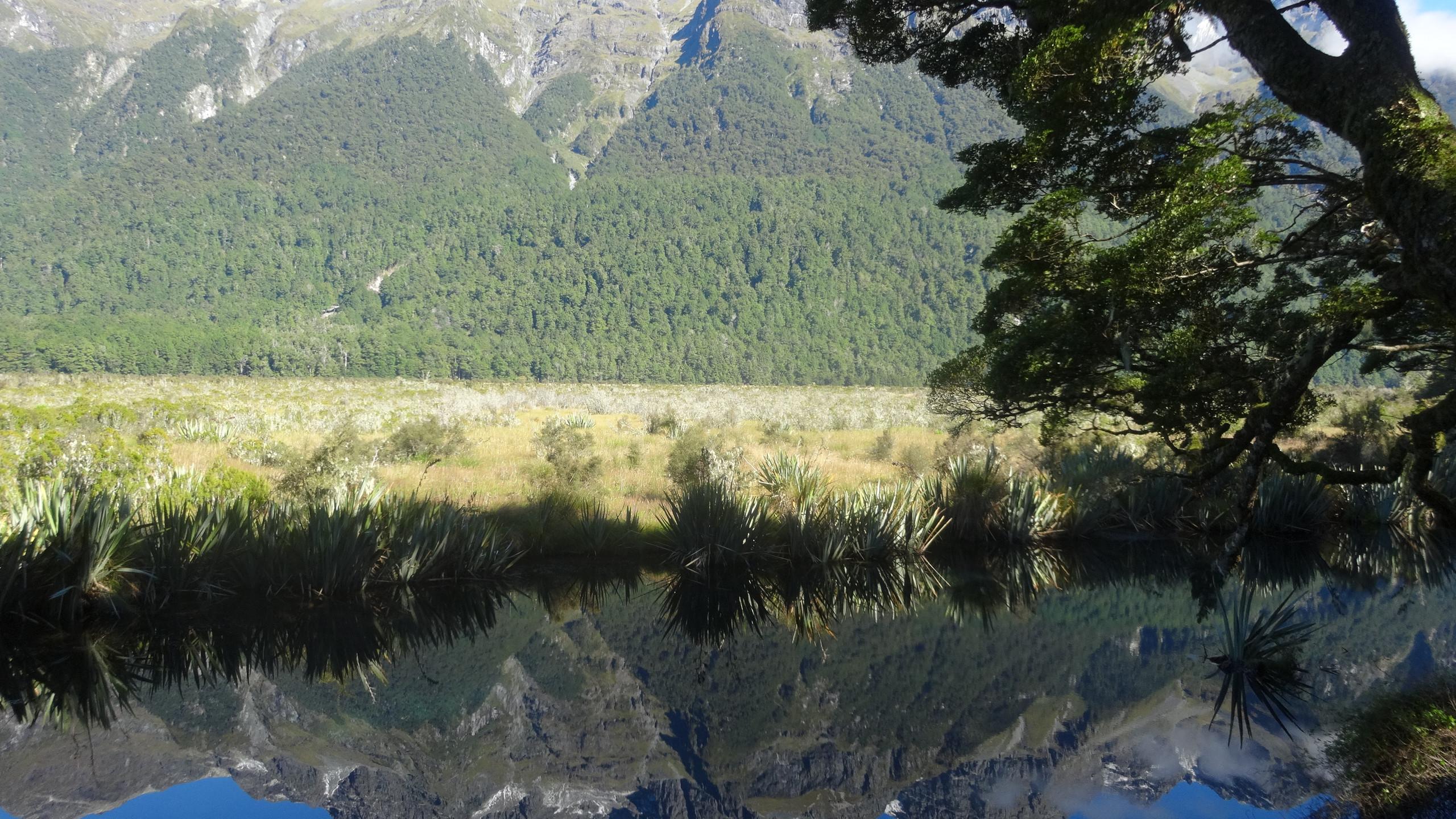 Mirrow lake in Fiordland National Park New Zealand