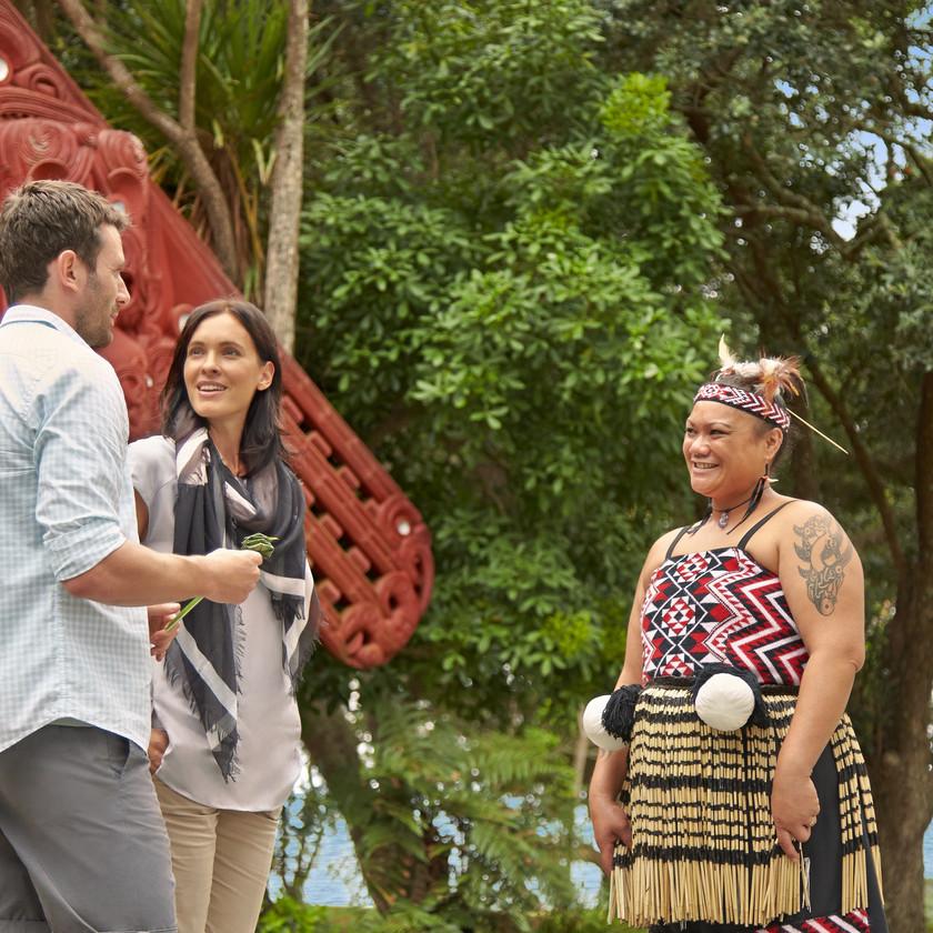 Day Pass to Waitangi Treaty Ground, Paihia. New Zealand activities.