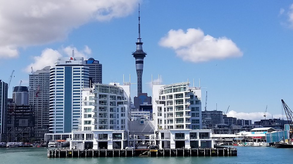 Auckland City Tour with a private guide, New Zealand