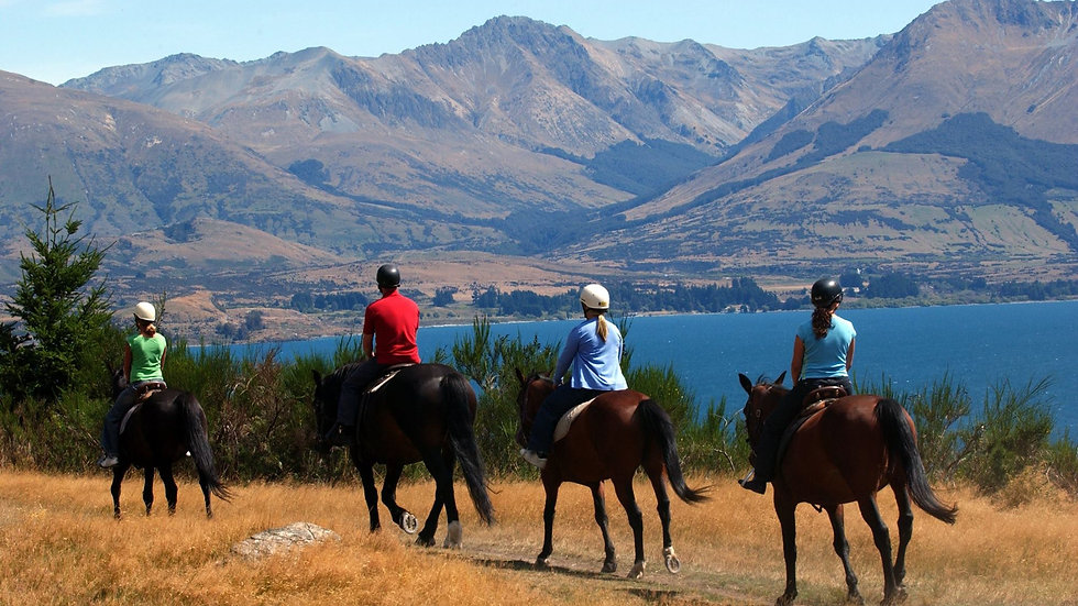Horse riding, Walter Peak, Queenstown. New Zealand activities. Tours of New Zealand.
