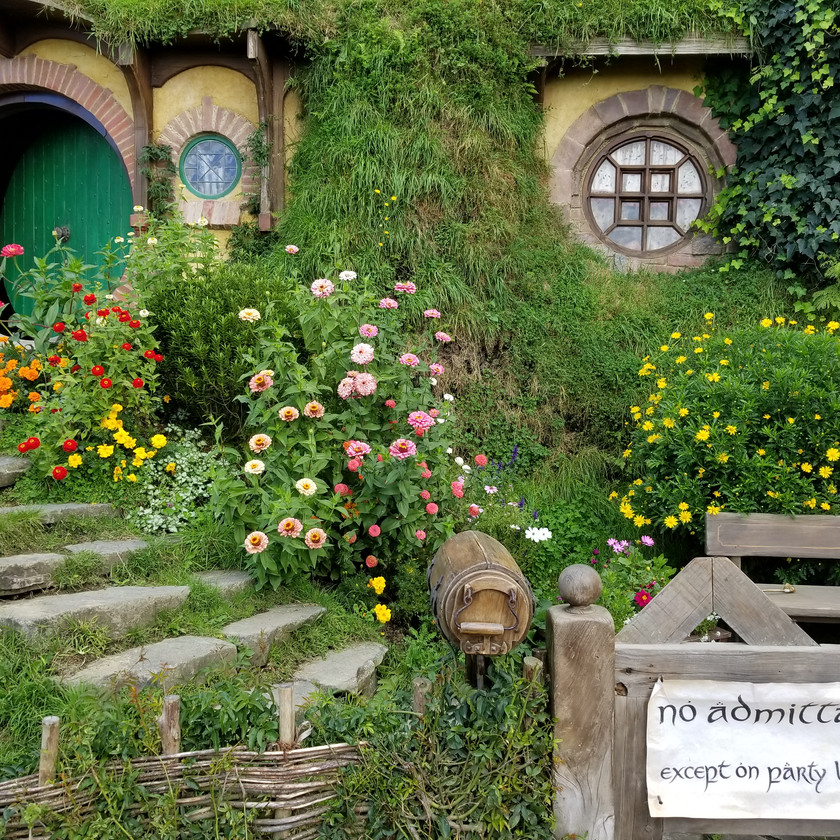 Guided Day Tour Auckland - Hobbiton - Auckland