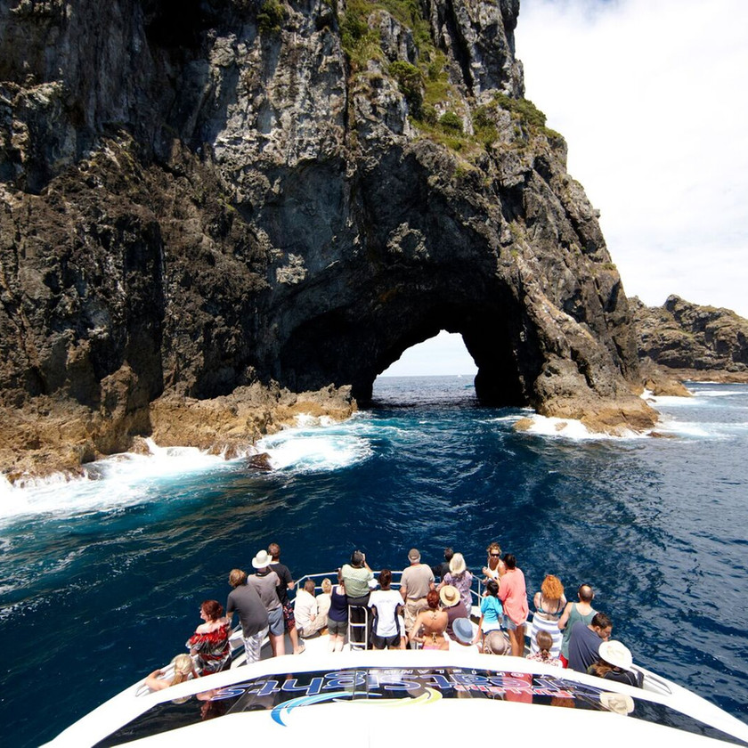 Day Tour in Small Group ex Auckland: Bay of Islands with Hole in the Rock Cruise. New Zealand activities.