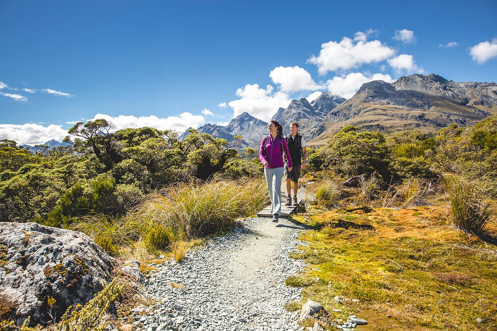 Milford Track Guided Day Walk, Fiordland NP