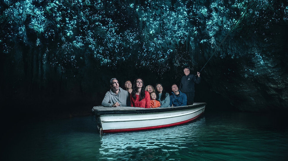Waitomo Glowworm Boat Tour, New Zealand
