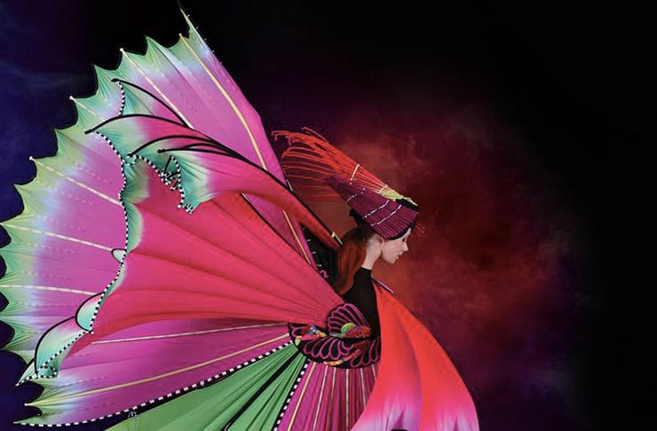World of Wearable arts, Wellington, festivals in New Zealand