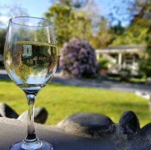 Винодельни Новой Зеландии