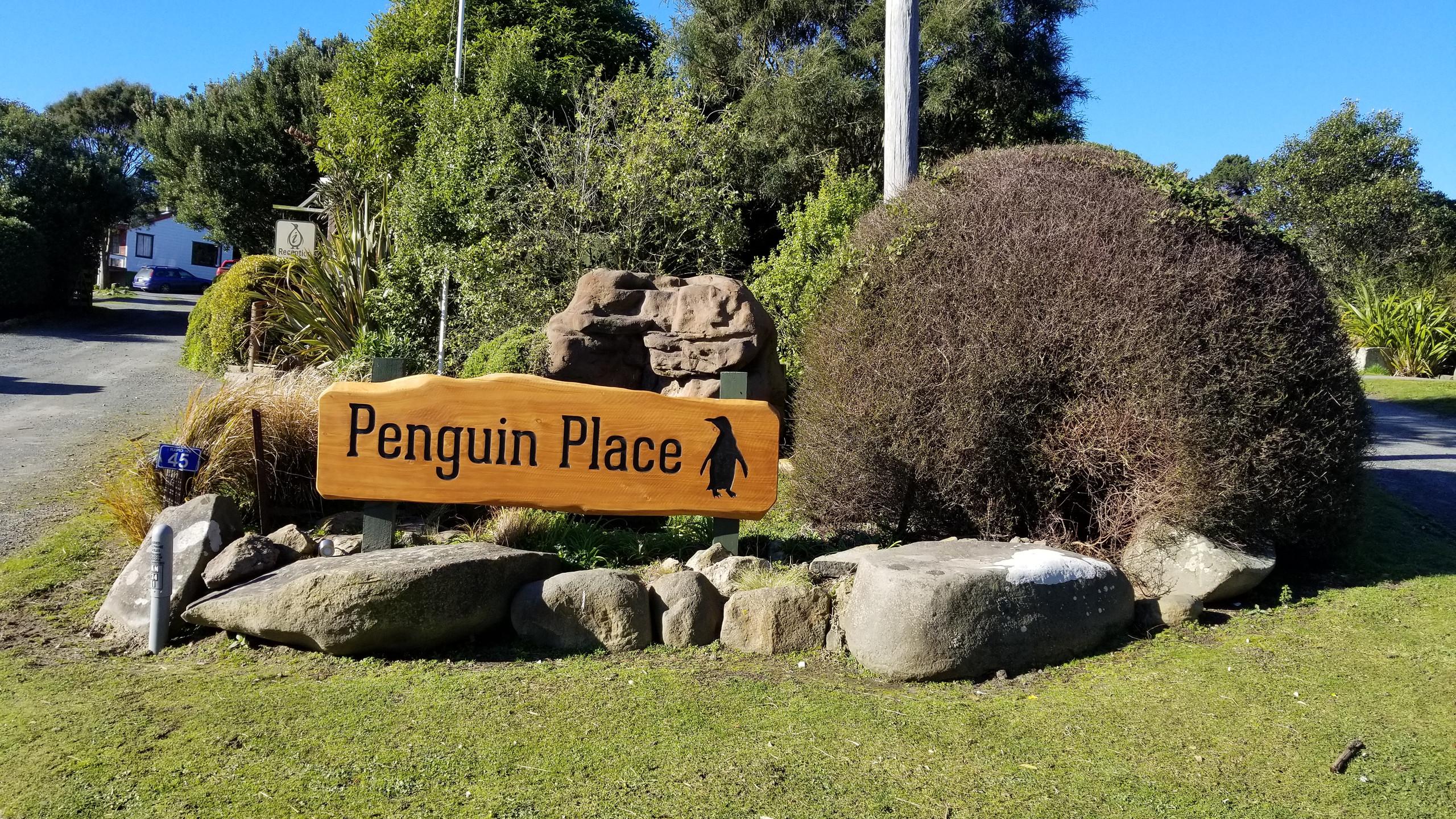 Заповедник пингвинов, Новая Зеландия