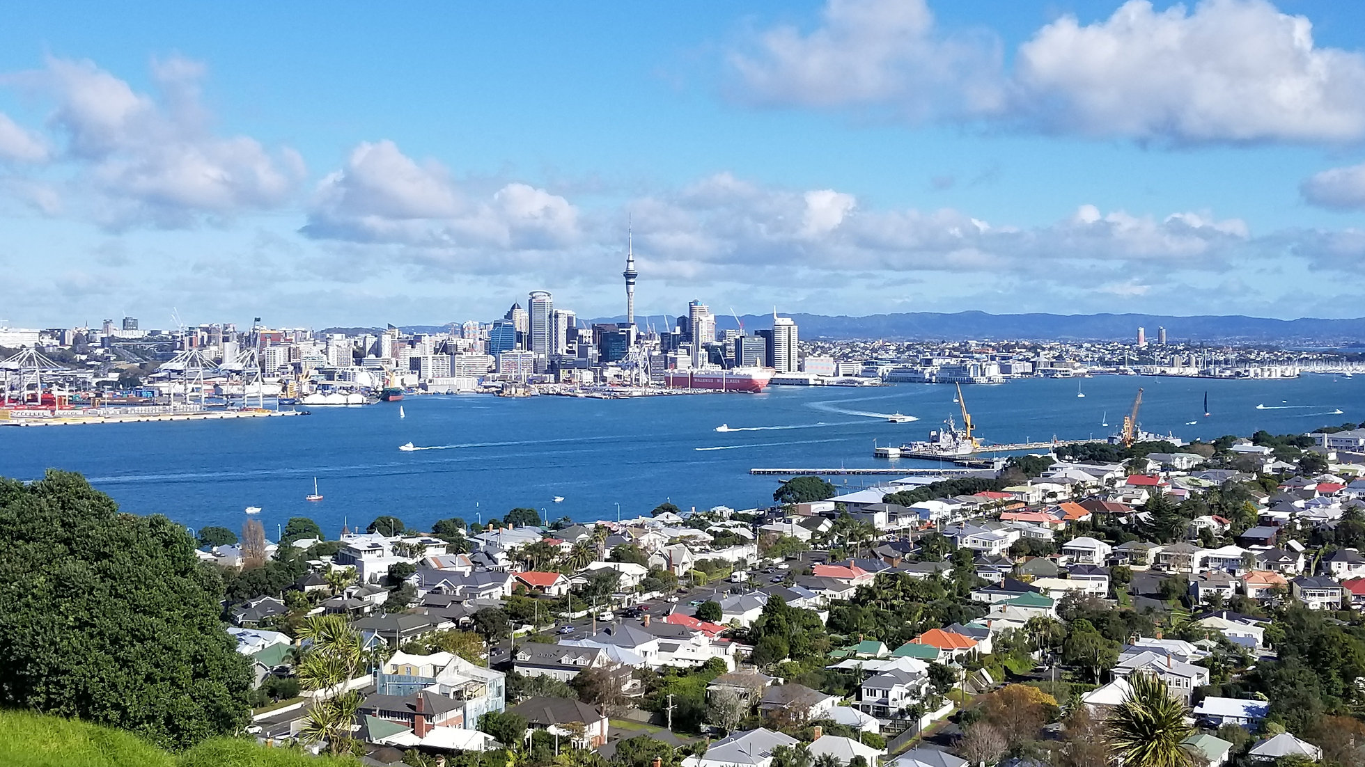 Auckland City Tour • Soaring Kiwi Tours