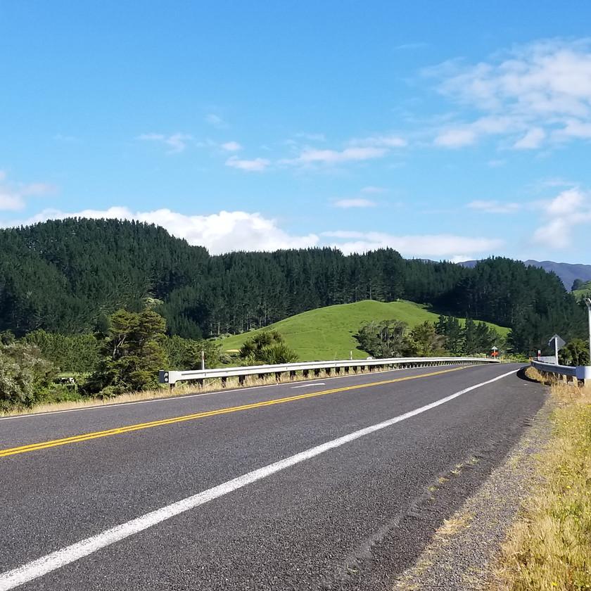 Дороги в Новой Зеландии