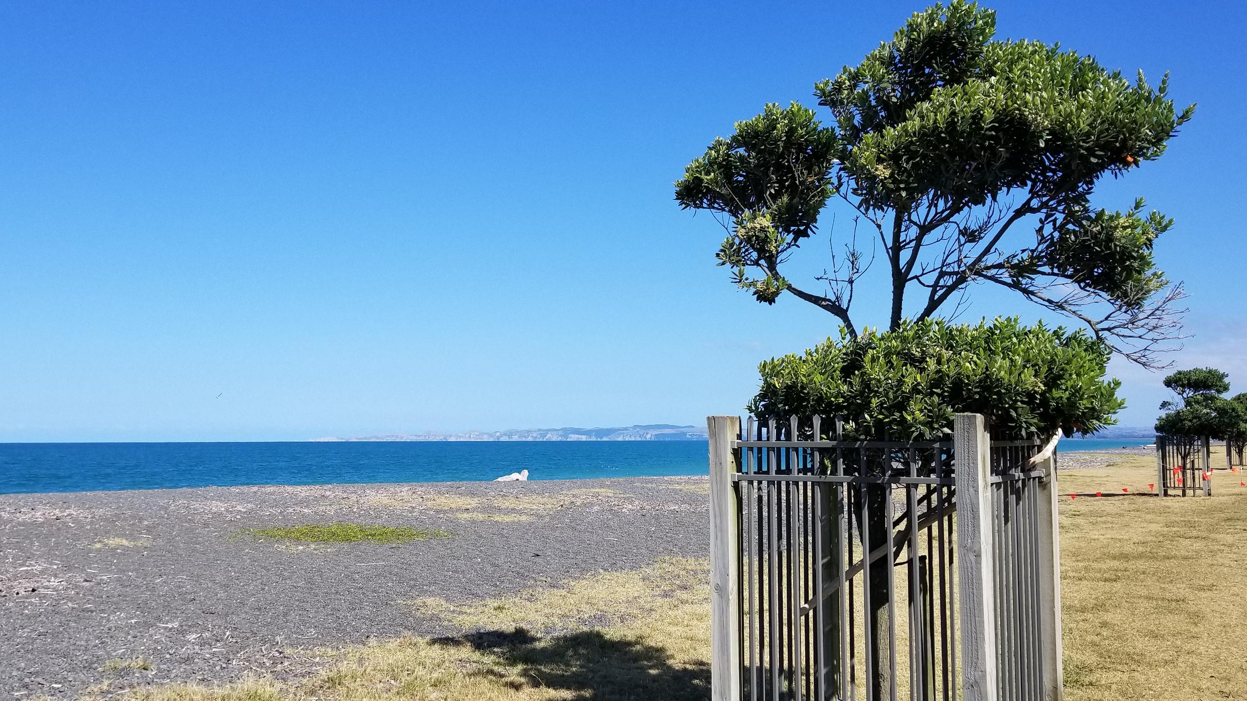 Napier, New Zealand attractions, New Zealand activities