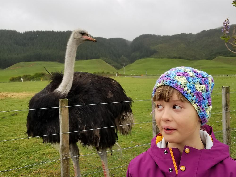 тур в Новую Зеландию, путешествие в Новую Зеландию