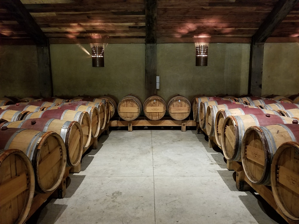 wine tour in new zealand, group tour to new zealand