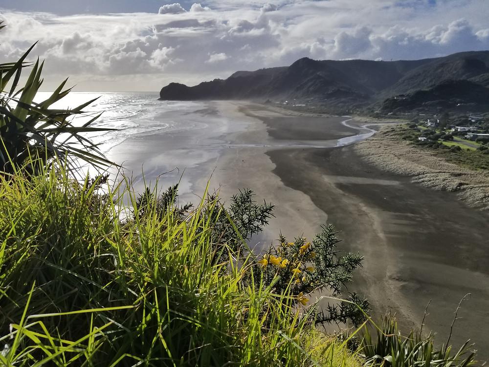 Пляж Пиха, Окленд, Новая Зеландия. Туры в Новую Зеландию.