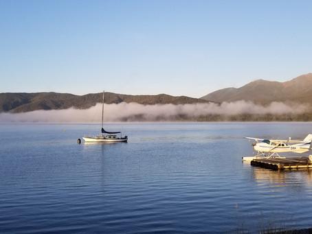Как влияет коронавирус на туристическую отрасль Новой Зеландии