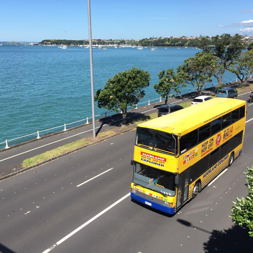 Hop On Hop Off Explorer Bus Auckland