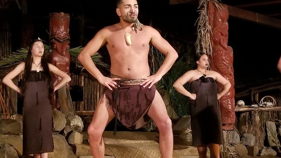 Maori Show Auckland Museum New Zealand