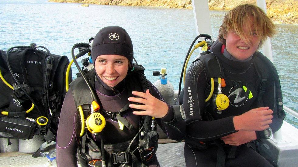 Diving, Poor Knights islands, New Zealand