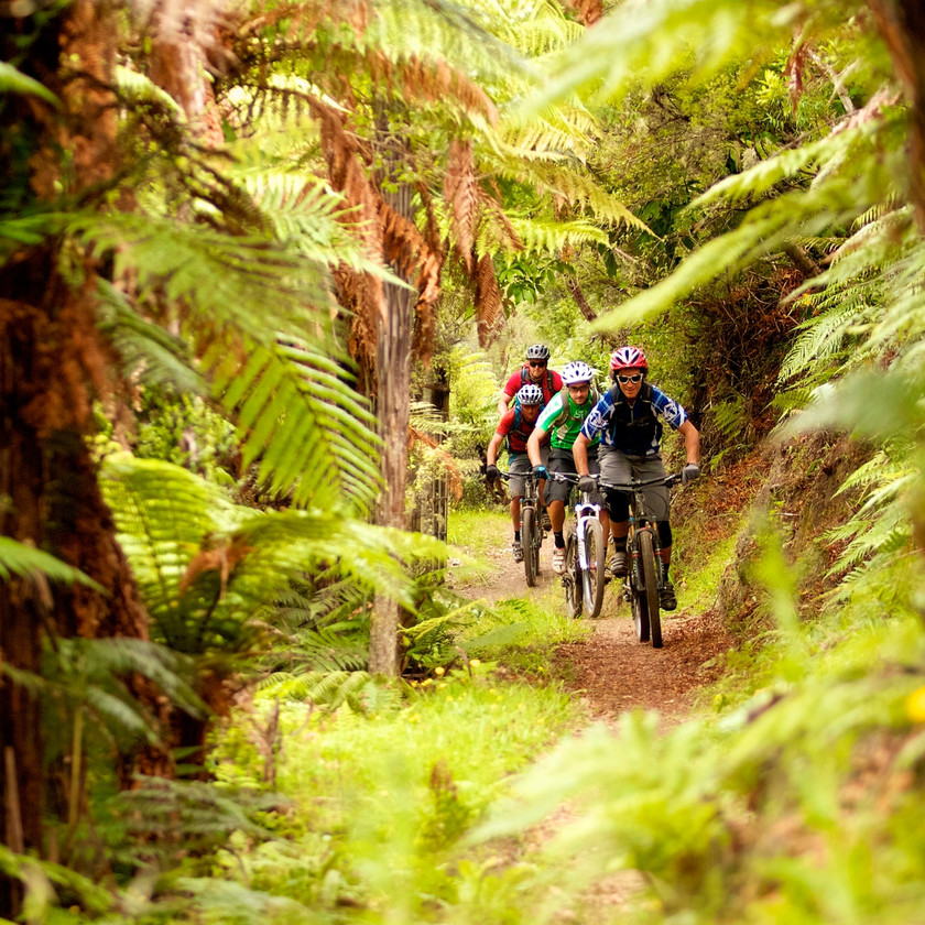 Mountain Bike and Kayak: Maori Rock Carvings Package, Taupo