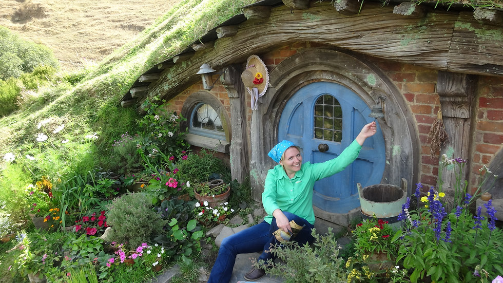 Tour to Hobbiton in a small group from Auckland