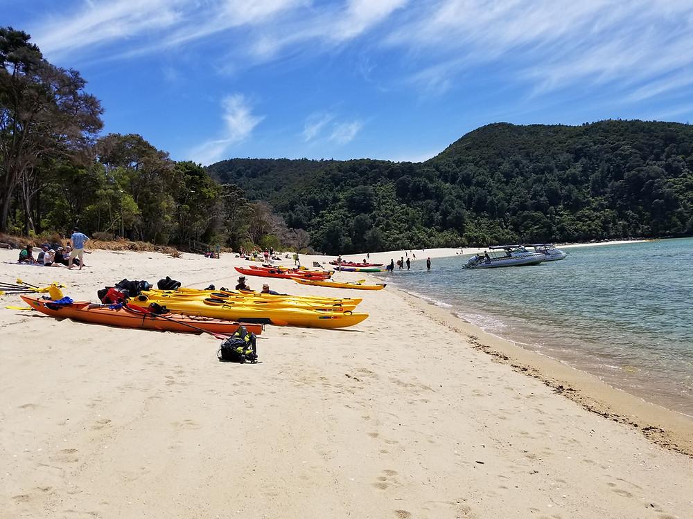 Kayaking in Abel Tasman national park New Zealand