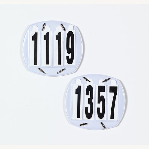 Equi-Essentials Number Sets- 4 Digit (Case of 10 pairs)
