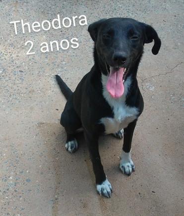 THEODORA - JUN2018