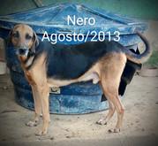 NERO - AGO 2013