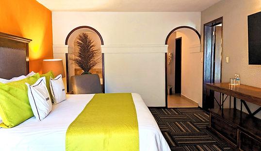 Master Suite Real de Minas