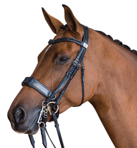 FAIRFAX DOUBLE BRIDLE €870 - €1020 inc Full Consultation