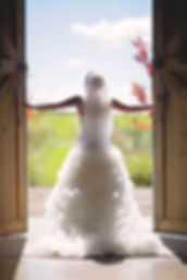 Bride in wedding dress. Bride in country wedding. Wedding photo. Wedding photography. Wedding photogapher. Elk River, Minnesota photographer. Minneapolis wedding photographer. Jewelry photographer.