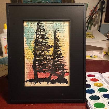 Windblown Spruce