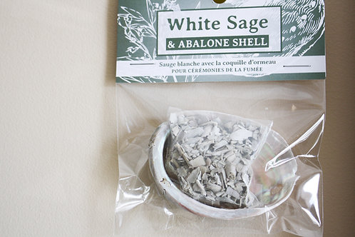 White Sage and Abalone Shell