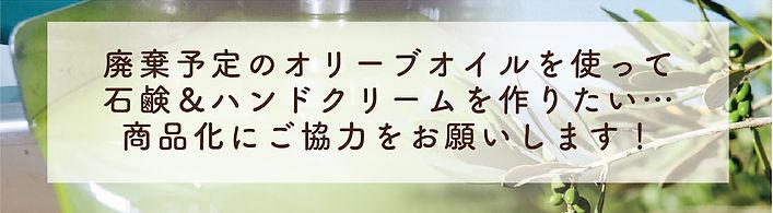 クラファンチラシ元データ-03.jpg