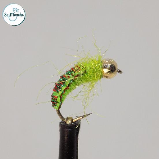 Nymphe tissée verte