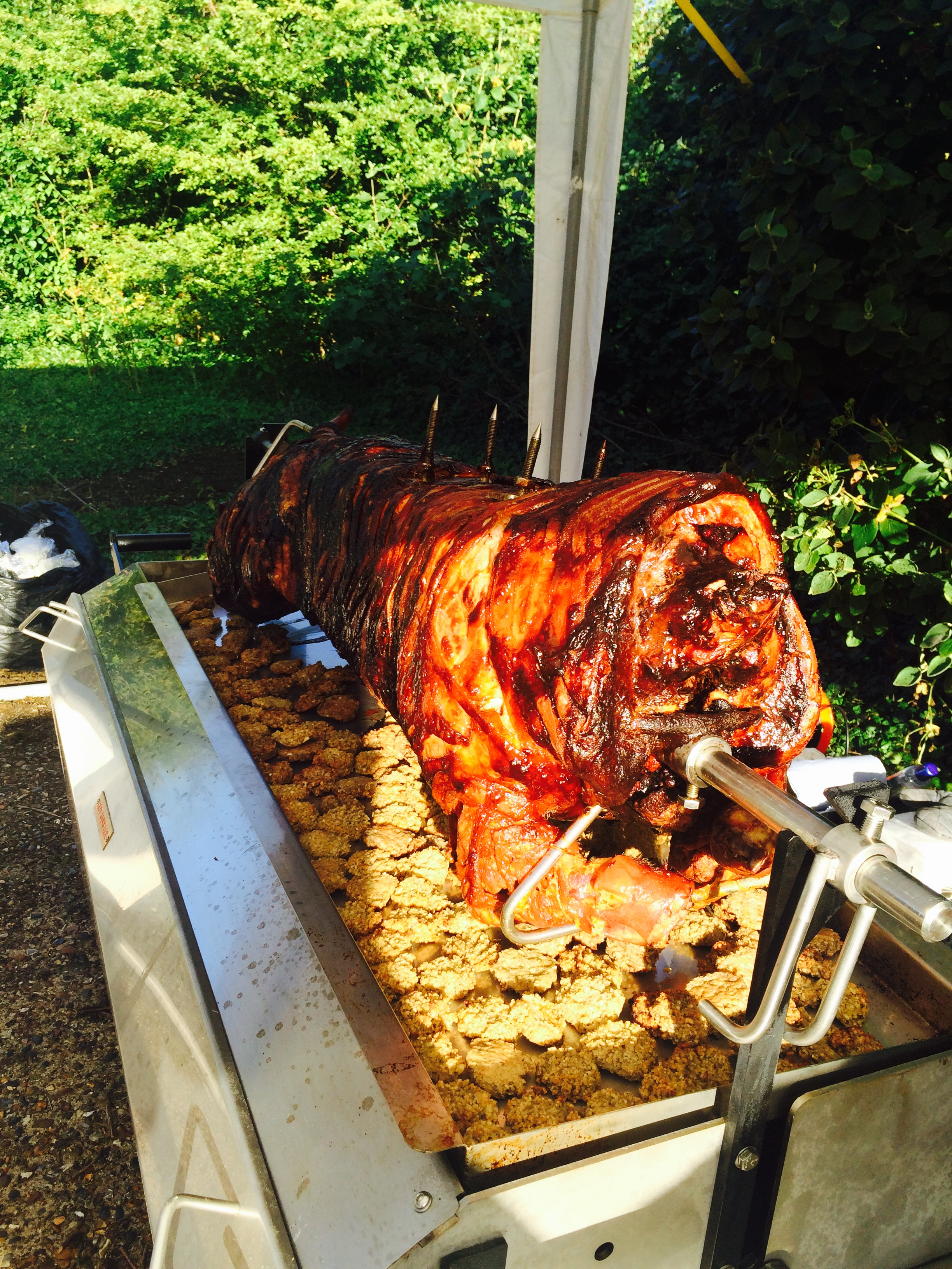 Hog and Stuffing