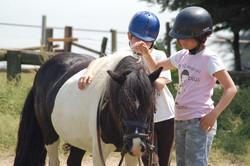 Equitation sur poney