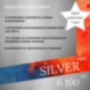 Silver 2, копия (1).png